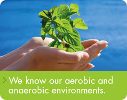 We know our aerobic and anaerobic environments.